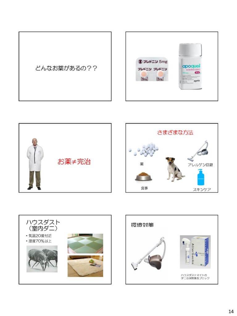 茨城県獣医師会 セミナー スライド2