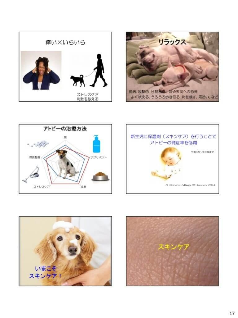 茨城県獣医師会 セミナー スライド3